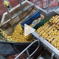 VIDEO : voici comment sont faites les chips