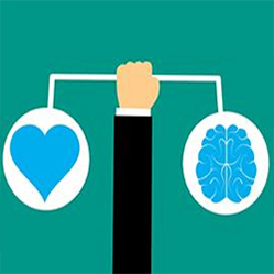 Les employeurs attachent trop peu d'importance à l'intelligence émotionnelle