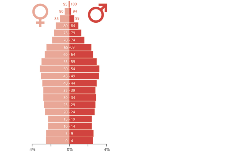 Belgische leeftijdspiramide